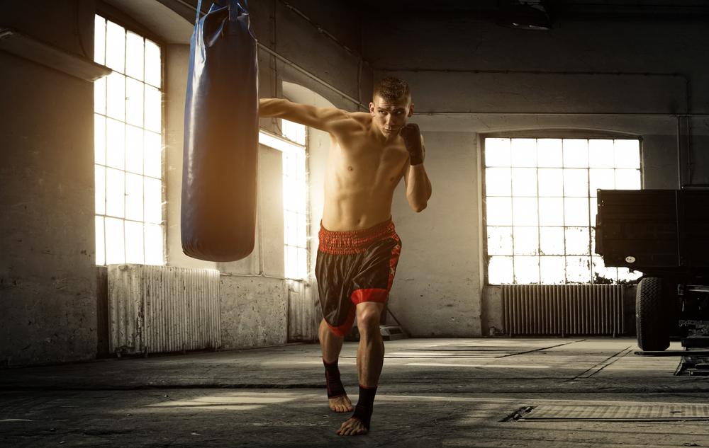 FIGHTING SHAPE - Robert Irvine